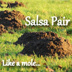 SalsaPairLikeAMole